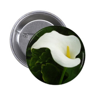 Calla Lily 8 Painterly Buttons