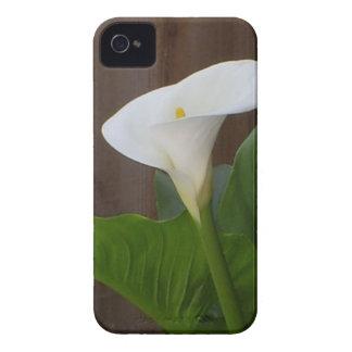 Calla Lily iPhone 4 Case-Mate Case