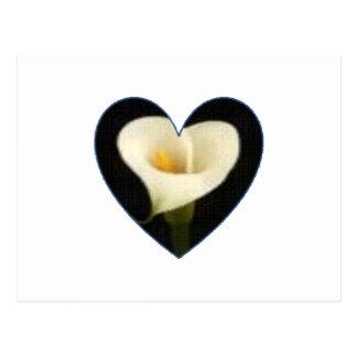 Calla Lily Heart Postcard