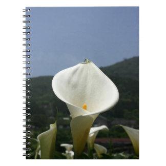 Calla Lily Plantation, Taiwan Notebook