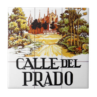 Spanish ceramic tiles for Calle prado jerez 55 navacerrada