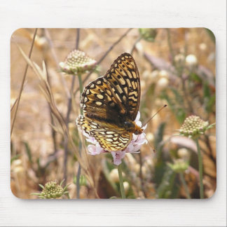 Callipe Silverspot Butterfly Mouse Pad