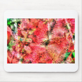 CALLISTEMON BOTTLE BRUSH FLOWER ART EFFECTS MOUSE PAD
