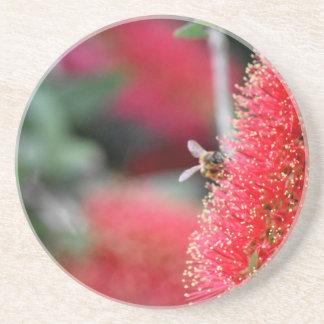 CALLISTEMON BOTTLE BRUSH FLOWER & BEE AUSTRALIA BEVERAGE COASTER