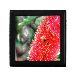 CALLISTEMON FLOWER AND BEE AUSTRALIA ART EFFECTS SMALL SQUARE GIFT BOX