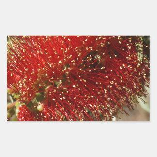 CALLISTEMON RED BOTTLE BRUSH TREE FLOWER AUSTRALIA RECTANGULAR STICKER