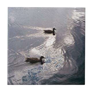 Calm Ducks Before the Storm Tile