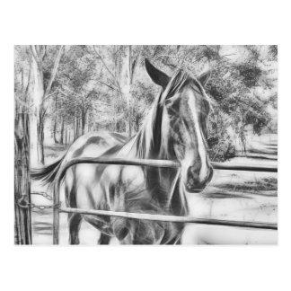 Calm horse standing near gate card