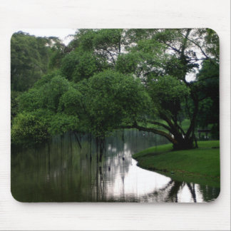 Calm Waters Mousepad