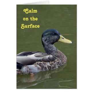 Calm, Yet Crazy Duck Card