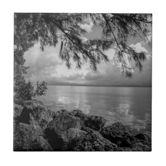 Caloosahatchee Calusa Blueway River Florida Small Square Tile