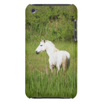 Camargue Horse in the Alpes Cote d'Azur of the iPod Touch Case-Mate Case