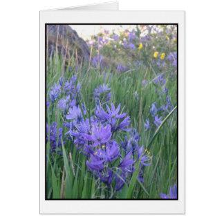 Camas blossoms card