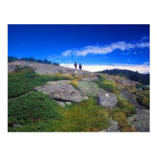 Camden Hills Hikers Postcard