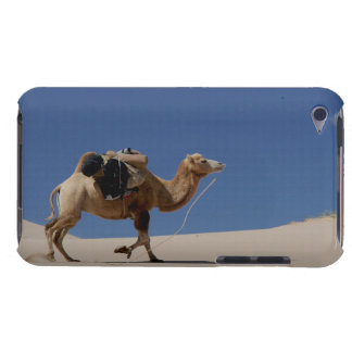 camel barely there iPod cases