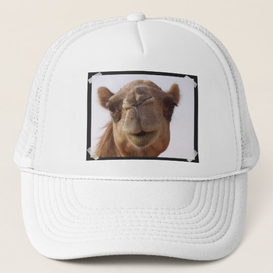 Camel Baseball Hat