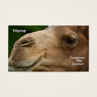 Camel Business Card