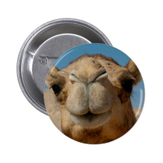 Camel button