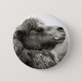 Camel Button