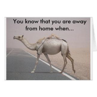 Camel c card