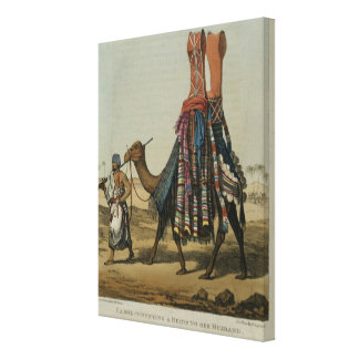 Camel Conveying a Bride to her Husband, engraved b Canvas Print