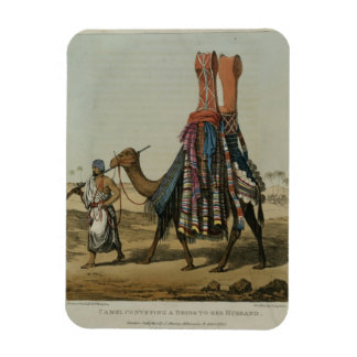 Camel Conveying a Bride to her Husband, engraved b Rectangular Photo Magnet