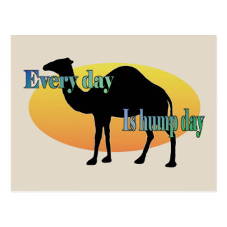 """Camel """"Every Day is Hump Day"""" Postcard"""