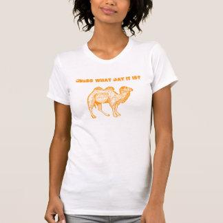 Camel Humor Hump Day T-shirt
