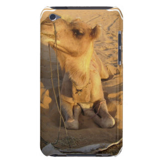 Camel in Desert iTouch Case iPod Touch Covers