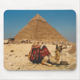 Camel In Repose Mouse Pad