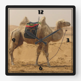 Camel in the desert square wall clock
