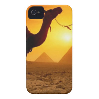 camel iPhone 4 Case-Mate case