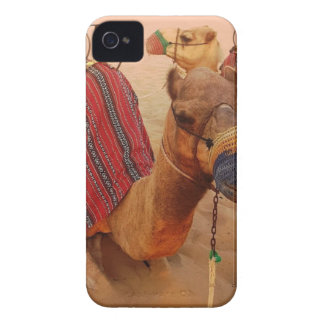 Camel iPhone 4 Cover