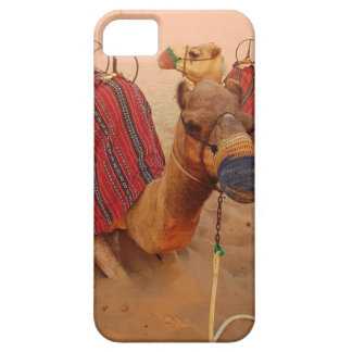 Camel iPhone 5 Cover