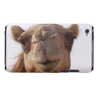 Camel iTouch Case iPod Touch Cover