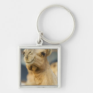 Camel Market near Cairo, Egypt Key Ring