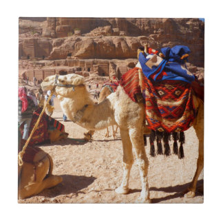 Camel Middle East Nature Animals Destiny Gifts Tiles
