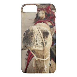 Camel on Cable Beach, Broome iPhone 7 Case