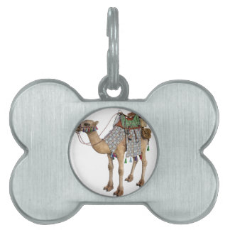 Camel prepared for Ancient Rider Pet ID Tags