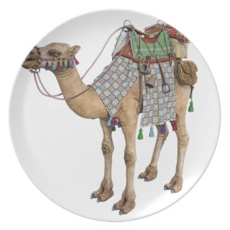 Camel prepared for Ancient Rider Plate