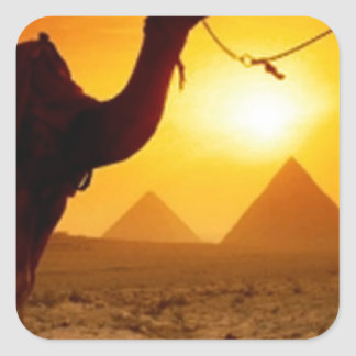 camel square sticker