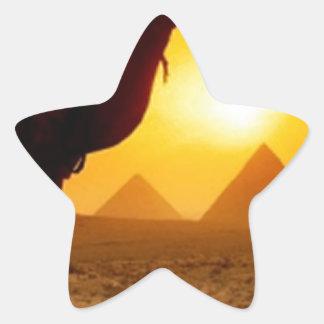camel star sticker