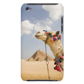 Camel with Pyramids Giza, Egypt Barely There iPod Covers