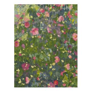 Camellia in Flower 2014 Postcard