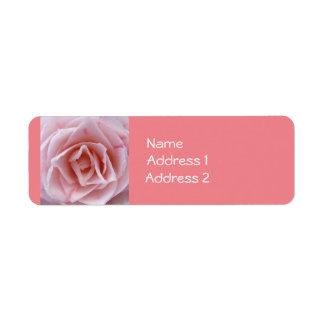 Camellia - Pink Return Address Label