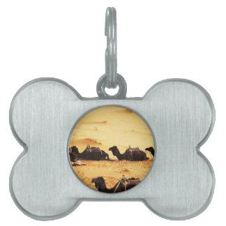 camels-6920 pet name tag