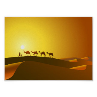 Camels at Sunset Poster
