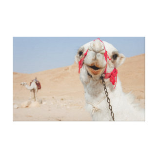 Camels in Palmira Gallery Wrap Canvas