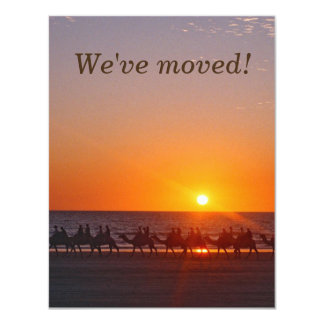 Camels Moving Announcement with Sunset Back