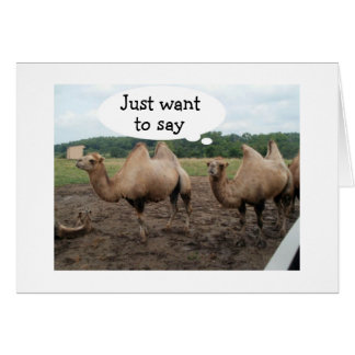 CAMELS SAY NO HUMP DAY-IT'S YOUR BIRTHDAY GREETING CARD